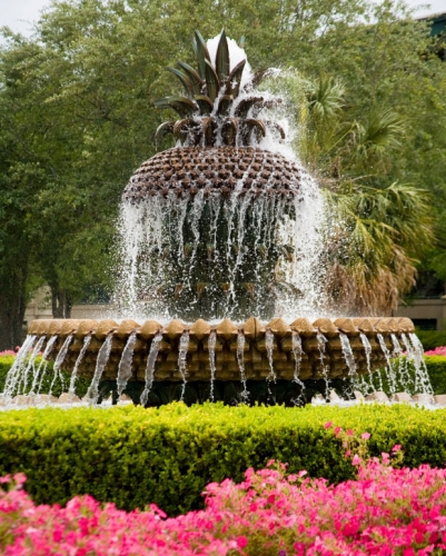pineapple-fountain